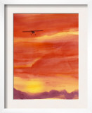 Airplane in Orange Sunset