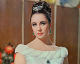 Elizabeth Taylor - The VIPs