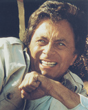 Bill Bixby - The Incredible Hulk