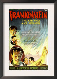 Frankenstein  Dwight Frye  John Boles  Mae Clarke  Boris Karloff  Edward Van Sloan  1931