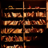 Library Books on Shelves  in Sunlight and Shadows
