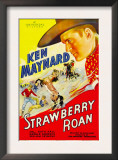 Strawberry Roan  1933
