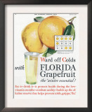 Florida Grapefruit  Colds Flu Fruit  USA  1920