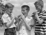 Three Boys All Wearing Short Sleeve Shirts and Two With Crew Cuts Eating Hot Dogs