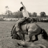 Man Riding Bucking Bronco