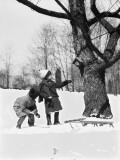 Two Children Pulling Sled  Looking Up Birdhouse in Tree  Winter