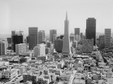 San Francisco Skyline  With Trans America Building