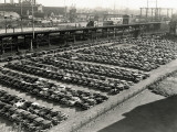 Rows of Cars in Parking Lot  Aerial View  Philadelphia