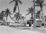 Trailer Camp in Palm Grove  Car and Trailer in Foreground  Florida
