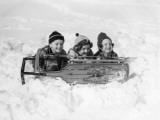 Two Girls and One Boy Lying on Belly in Snow Using Sled As Shield
