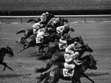 Jockeys Competing in Horse Race  Side View