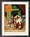 John Bull  Dogs Magazine  UK  1952