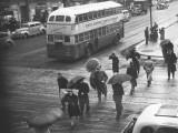 People Crossing Street in Rain  Elevated View