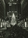 Rockefeller Center Decorated For Christmas  New York City