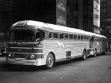 Greyhound Buses in New York City