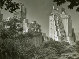 View of New York From Central Park