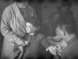 Diptheria Vaccine