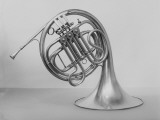 Studio Shot of French Horn