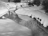 Stream in Winter (B&W)