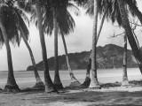 Nicaraguan Beach