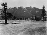 Golf at Banff