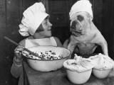 Doggy Chef