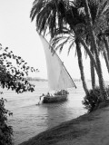 Tradition Egyptian Felucca Boat on River Nile  Cairo on Horizon