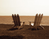 Adirondack Chairs I