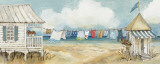 Fresh Laundry I