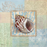 Oceanic Shell Collage I