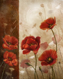 Wild Poppies I
