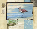 Sandpiper Collage II