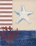 American Coastal III