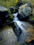 North Creek Tumbles Through Boulders  Schell Creek Range  Mt Grafton Wilderness  Nevada  USA
