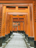 The ThoUSAnd Gates at Fushimi Inari Taisha  Kyoto  Japan
