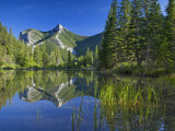 Wind Mountain Reflects in a Beaver Pond in the Lewis and Clark National Forest  Montana  USA