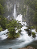 Tarawera Falls  Tarawera River  North Island  New Zealand