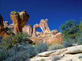 Angel Arch and the Molar in the Salt Creek Valley  Canyonlands National Park  Utah  USA