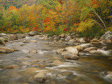 River Flowing Trough Forest in Autumn  White Mountains National Forest  New Hampshire  USA