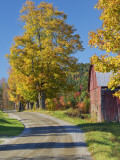 Road Beside Classic Farm in Autumn  New Hampshire  USA