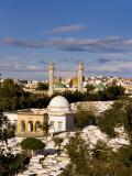 Bourguiba Mausoleum and Cemetery in Sousse Monastir  Tunisia  Africa