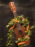 Koa Ukulele  Hawaii  USA
