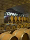 Barrels in Cellar at Chateau Changyu-Castel  Shandong Province  China