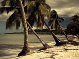 Playa Rincon Beach  Las Galeras  Samana Peninsula  Dominican Republic