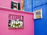 Colorful Burano City Homes  Italy