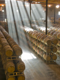 Shafts of Light in Barrel Room of Montevina Winery  Shenandoah Valley  California  USA