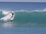 Surfing at Waikiki  Honolulu  Hawaii  USA