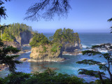 Seastacks  Makah Nation Tribal Lands  Cape Flattery  Washington  USA