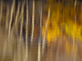 Autumn Colors Reflect in the Calm Water of Price Lake  Blue Ridge Parkway  North Carolina  USA