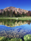 Sawtooth Mountains Reflected in Fourth of July Lake  Idaho  USA